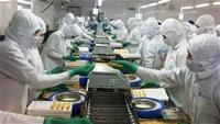 Đánh giá hiệu quả chi phí cho công tác an toàn vệ sinh lao động cấp doanh nghiệp